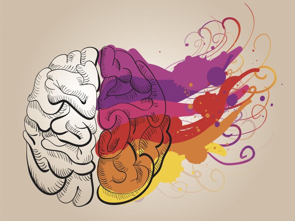 left brain, right brain, writing, grammar