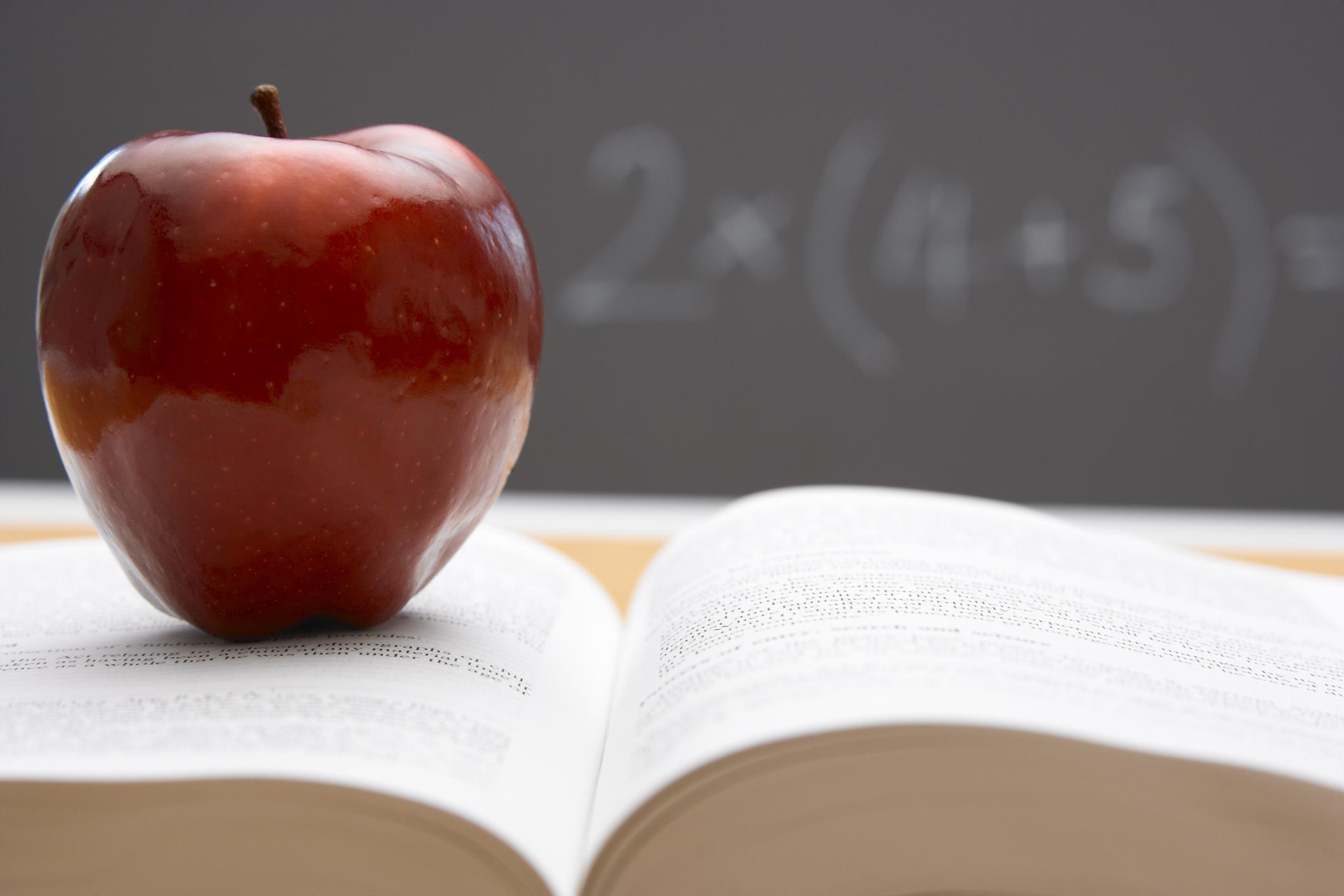 apple, teacher, National Teacher's Day, writing, Common Core, grammar, learning, elementary school