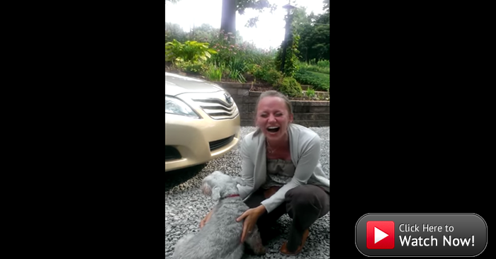 dog faints from overwhelming joy